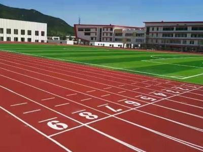 学校操场专用塑胶跑道